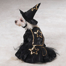 Little Witch Costume - $22.95+