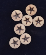Free Ship Brown Starfish Buttons Unknown Brand ... - $7.99