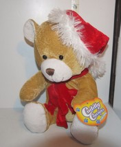 Cuddly Cousins Brand Plush Teddy Bear Dressed in Christmas Santa Claus H... - $7.10