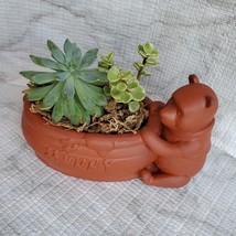 Winnie the Pooh Planter with Succulent Arrangement, Redware Animal Plant Pot image 3