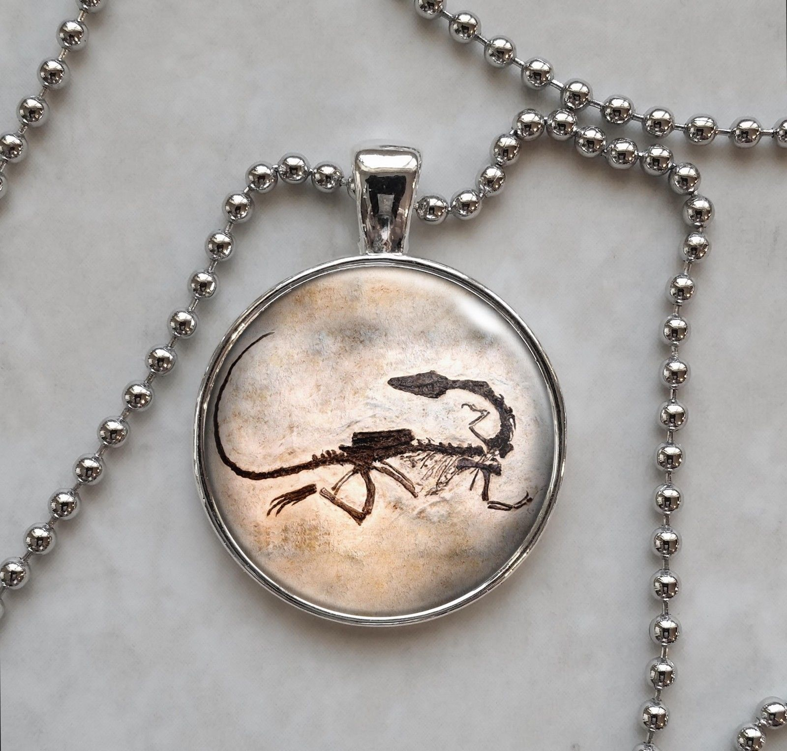 Primary image for Fossil Dinosaur Paleontology Science Pendant Necklace