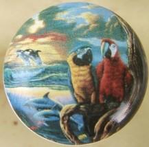 Cabinet Knobs W/ Parrots #2 @Pretty@ Tropical BIRD - $5.25