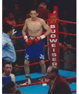 JULIO CESAR CHAVEZ JR 8X10 PHOTO BOXING PICTURE - $3.95