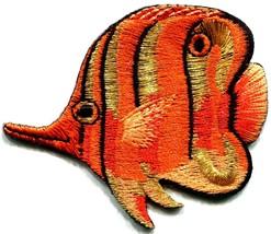Angelfish fish orange applique iron-on patch new S-222 - $2.95