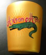 Hilton Head Shot Glass Gold Covered Glass Alligators Against Bright Sun - €6,00 EUR