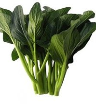 25 Seeds of Jung Green Yu Choy - Produces Dark Green Leaves - $12.87