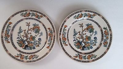 Ivory Lamberton Scammell China Indian Tree Salad Dessert Plates (2) Vintage 8