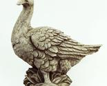 149 farmers duck d.a.b thumb155 crop
