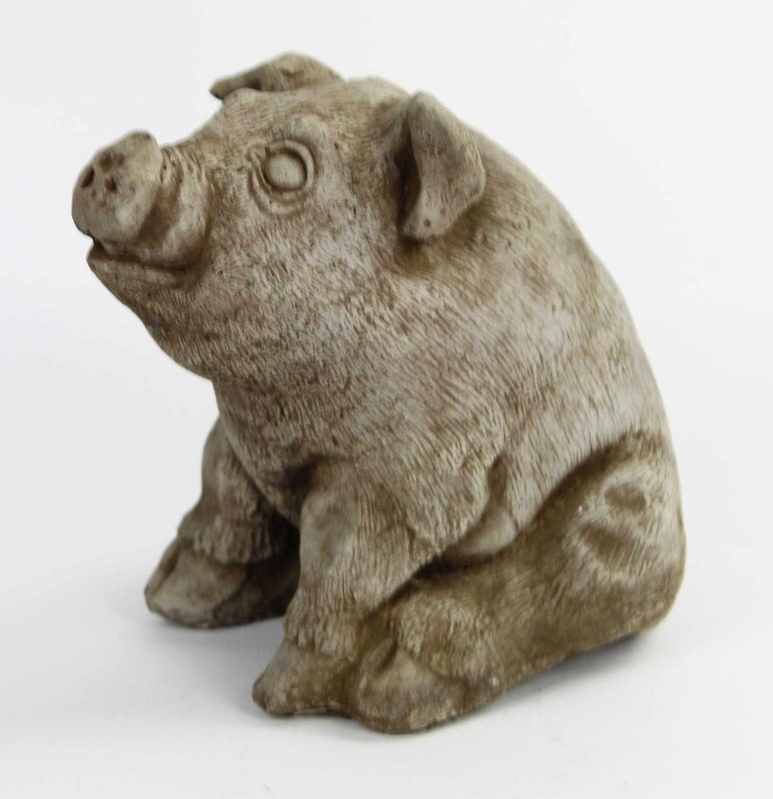 Pig Concrete Statue