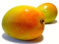 2 Mango Moisture Milk Handmade Soaps by Berrysweetstuff.com UNISEX