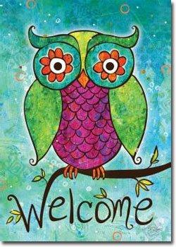 Rainbow owl 9432
