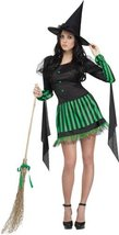 Wicked Witch Adlt Md Lg 10-14 - $39.72