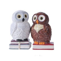 4.75 inches Book Owls Hedwig Magnetic Salt and Pepper Shaker Kitchen Set - $10.89