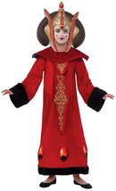 Star Wars Deluxe Queen Amidala Child Costume, Medium - $45.29