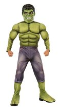 Rubie's Costume Avengers 2 Age of Ultron Child's Deluxe Hulk Costume, Large - $34.93