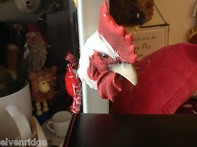 White rooster red comb with real feathers refrigerator magnet in 3D
