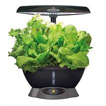 MiracleGro AeroGarden 6 LED with Gourmet Herb S... - $0.00