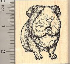 Guinea Pig Rubber Stamp, Realistic Cavy Art J50503 WM - $14.95
