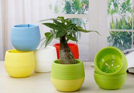 5 Pcs Wholesale Flower Pots Mini Flowerpot Garden Unbreakable Plastic Po... - $9.99