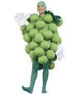 GRAPES GREEN CHILD COSTUME - £40.47 GBP