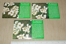 Lot of 3 The Legend of the Dogwood Color King Postcards Photo by Walter ... - $15.00