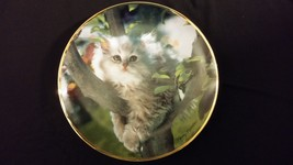 1994 Out On A Limb Grey Long Haired Cat In Tree Collectors Edition Plate - $25.00