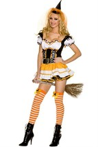 Orange Witch Women's Sexy Adult Halloween Costume - $43.99