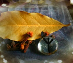 Protection Norse Seidr Spell Sachet, Very Powerful Spell Cast Mixture - $20.00