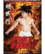 Fist of Fury movie DVD Donnie Yen; Bey Logan martial arts action - $19.99
