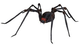 Spider Monstrous Prop - €120,83 EUR