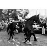 DVD - History of TRIPLE CROWN & Near-Misses...ALYDAR/Risen Star/WINNING ... - $34.99