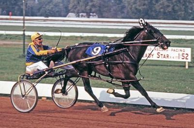 Primary image for DVD - LITTLE BROWN JUG Vol. I - Bret Hanover/ALBATROSS/Niatross/NIHILATOR