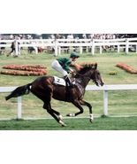 DVD - Who Kidnapped SHERGAR? 29-Year MYSTERY of 1981 European CHAMPION - $34.99