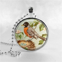 ROBIN Necklace, Robin Pendant, Robin Jewelry, Robin Bird, ird Nest, Robin Egg, W - $12.95