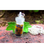 Spiritual Connection Spell Bottle Pendant Necklace - $20.00