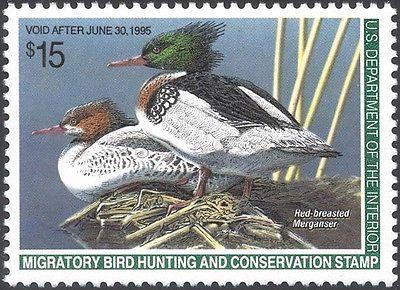 RW61, $15.00 Red-Breasted Merganser Duck Stamp VF OG NH - Stuart Katz
