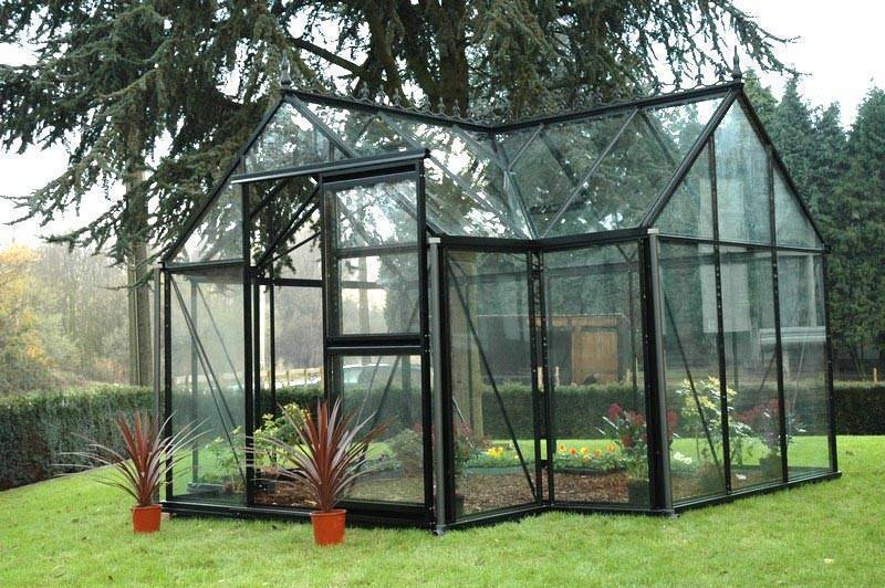 Sprout Junior Greenhouse Free Shipping