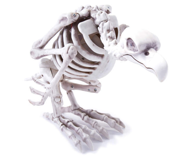 Animated Skeleton Vulture Halloween Prop * in stock NOW 2016 *