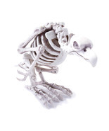 Animated Skeleton Vulture Halloween Prop * in stock NOW 2016 * - $766,55 MXN