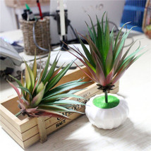 Artificial Succulents Real Touch Plastic Grass Plants Gargen Home Floral Decor - $3.09