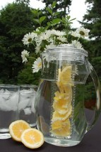 Pitcher Prodyne Fruit Infusion Flavor h1050 l575 w725 w112 FI-3 2.9 qt Home - $29.23