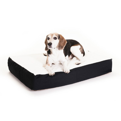 Primary image for Pet Bed Double Pillow Dog Cat Products Supplies Play Sleep Accessories Home SALE