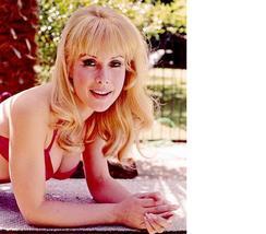 I Dream of Jeannie Barbara Eden MM18 Vintage 11X14 Color TV Memorabilia Photo - $13.95