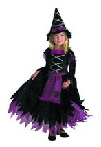 Little Girl Toddler Fairytale Witch Haloween Costume, Small  2T - $33.61
