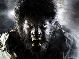 The Wolfman horror drama Movie Benicio Del Toro 24x18 Wall Print POSTER - $9.95