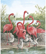 Pink FLamingo Birds Cross Stitch Pattern***L@@K*** - $4.95