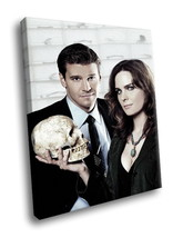 Bones TV series Emily Deschanel David Boreanaz 40x30 Framed Canvas Art P... - $29.95