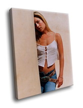 Ali Larter Actress 30x20 Framed Canvas Art Print - $19.95