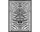 Zebra stock  63467 thumb155 crop