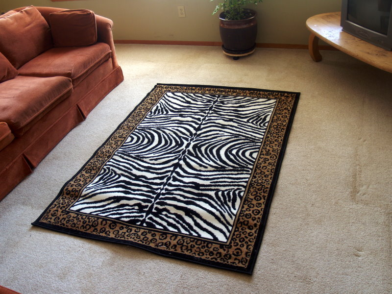Zebra Print Area Rug with Leopard Border 8ft. x 11ft.